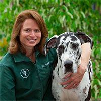 Dr Bonnie Cline and her great dane outside in Richmond, Virginia